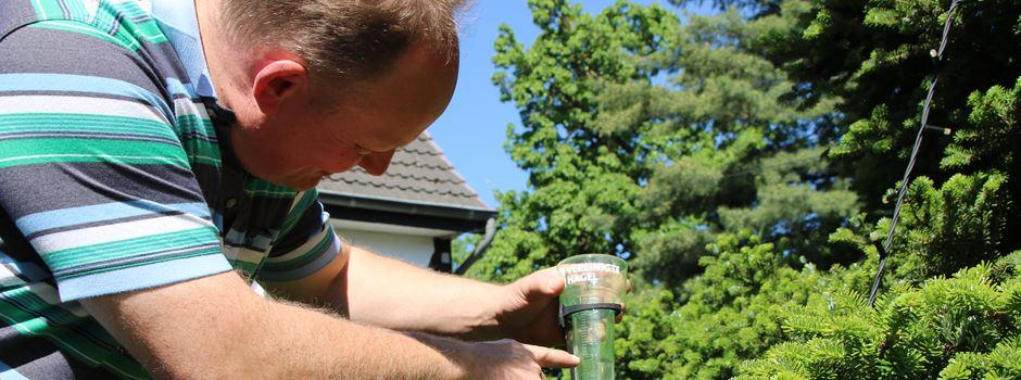 70 Liter/m² Regen im Mai: Ortslandwirt Witte erklärt, wie sich das auswirkt