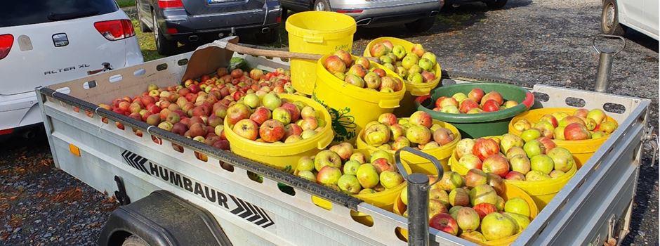 Leckerer, gesunder und naturreiner Apfelsaft vom Bürgerverein Niederkassel