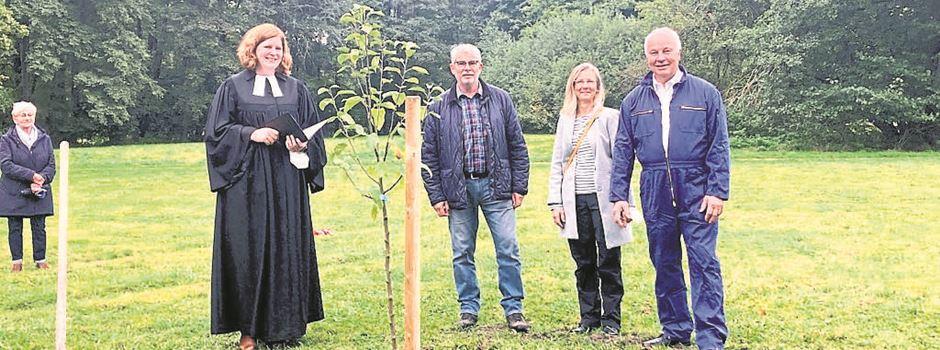 Ökologisch, solidarisch, nachhaltig: Eine neue Streuobstwiese für Munster