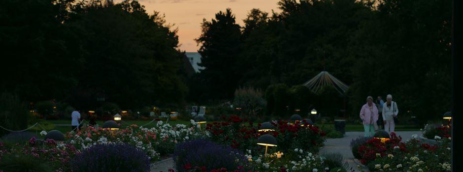 5 Orte für einen romantischen Herbstspaziergang in Augsburg