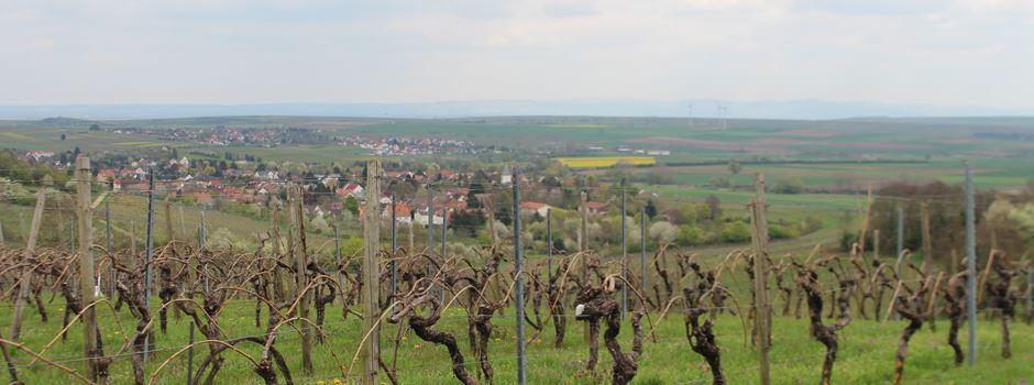 Ebersheim: Verordnung verärgert Landwirte