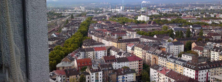 Umbau der Wallaustraße ab 31. August