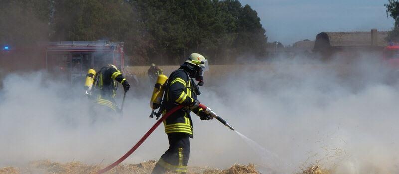 Gedroschenes Kornfeld in Flammen