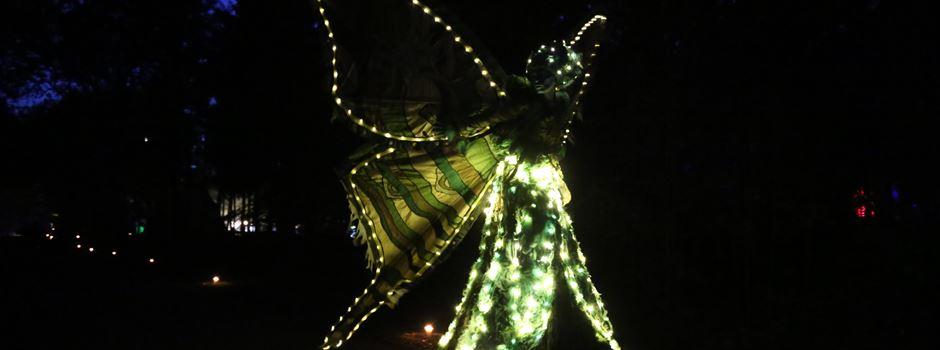 """Licht und Klang in der Natur: """"Heidezauber"""" feierlich eröffnet"""