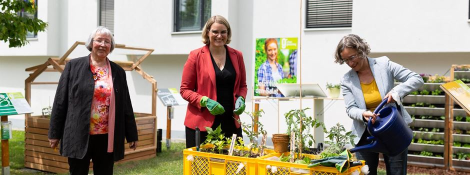 Urban Gardening an der Hochschule: Innovative Konzepte zum Abschauen
