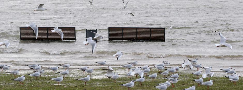 Schneeschmelze verursachte Hochwasser