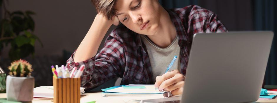 Wie Wiesbadener Schüler mit Homeschooling umgehen