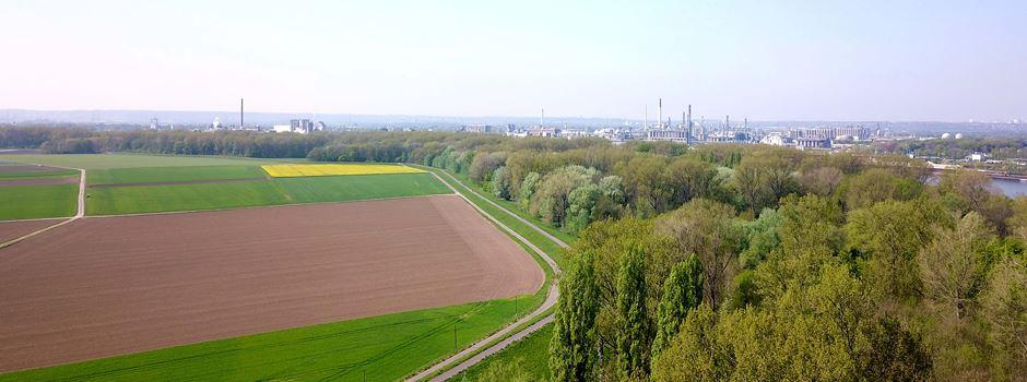 Demonstration gegen die Rheinspange 553 in Lülsdorf