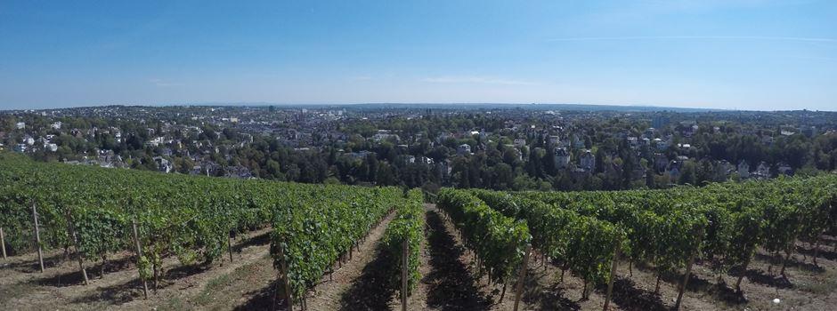 Warum Sonnenanbeter nach Wiesbaden ziehen sollten