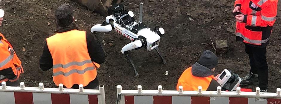 Roboterhund in der Neustadt im Einsatz – was ist seine Aufgabe?