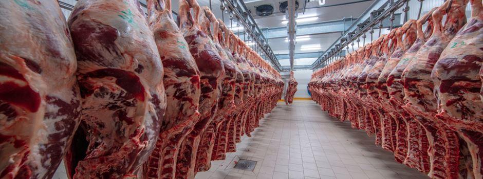 Woher das Halal-Fleisch in Wiesbaden kommt