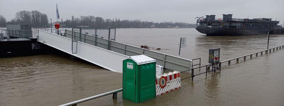 Das tut die Stadt, um Mainz vor extremen Hochwassern zu schützen