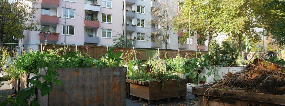 Wie steht es um den Frankfurter Garten?