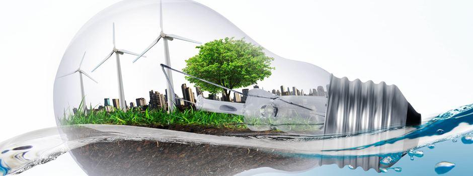 Klimaschutzmaßnahmen der Stadtverwaltung Niederkassel