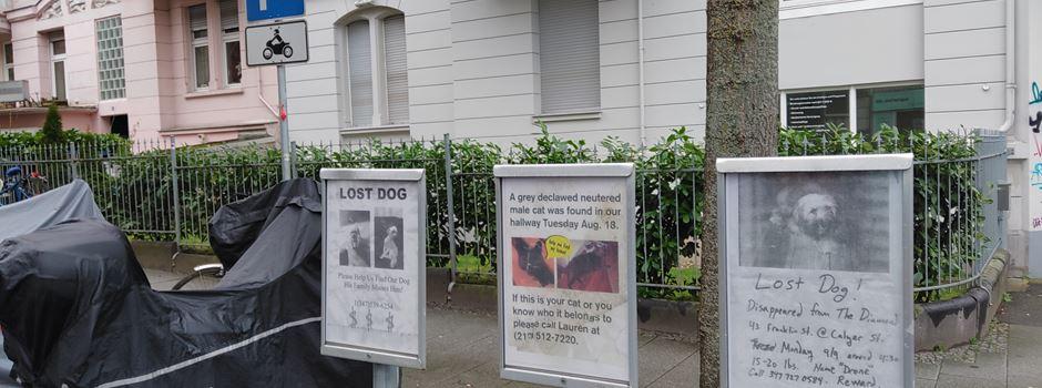 Warum im Westend Vermisstenanzeigen für New Yorker Tiere hängen