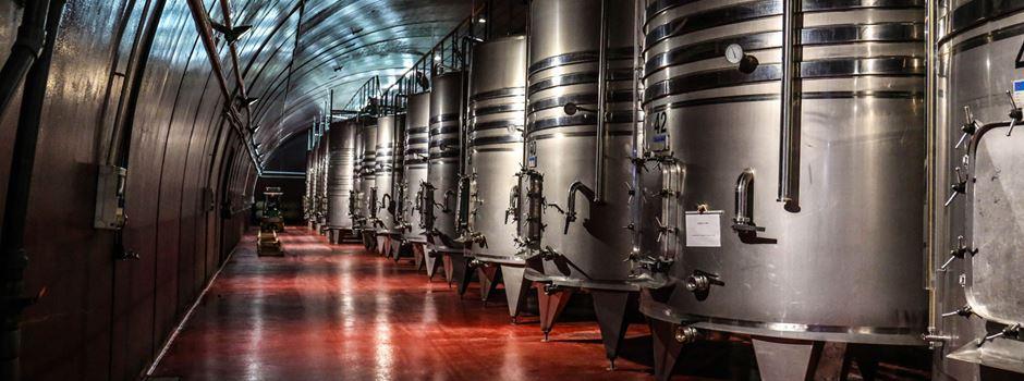 360° Tour durch einen Weinkeller
