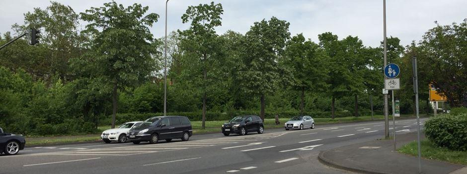 Wiesbaden bekommt 750 neue  Straßenbäume
