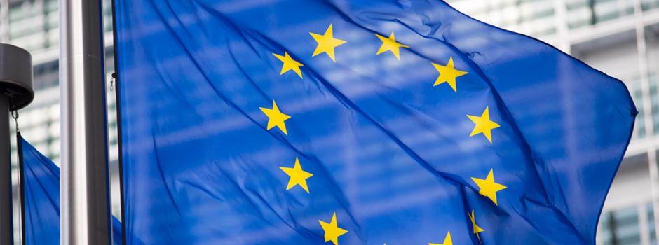 So haben die Mainzer bei der Europawahl abgestimmt