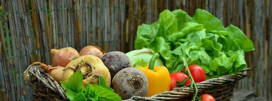 Heimisches Gemüse kaufen – 5 Bauernhöfe im Augsburger Umland