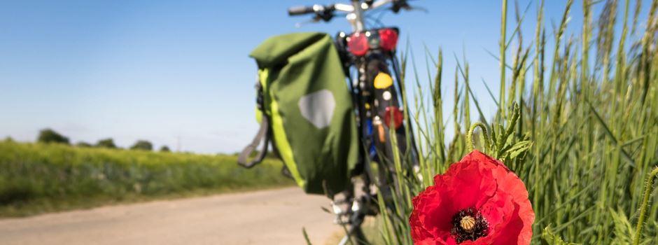 SoVD Schneverdingen mit Rad und Tat