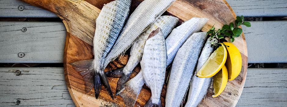 Fisch essen in Augsburg – 8 Wege für Fischliebhaber