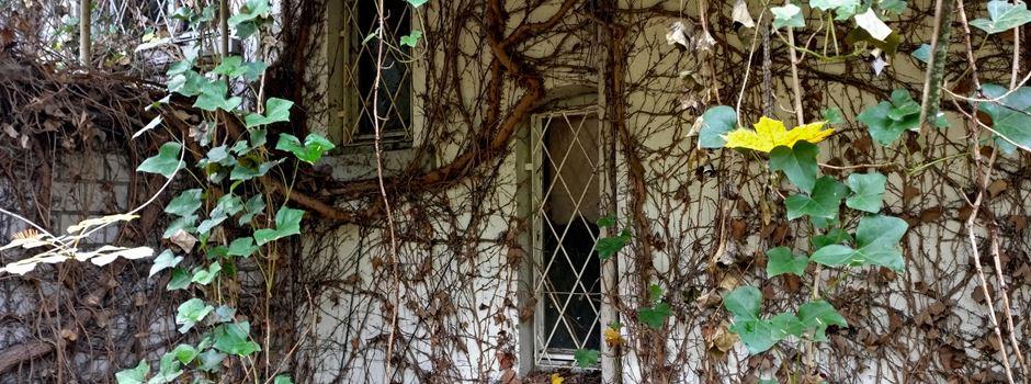 Wie geht es mit dem Geisterhaus in der Oberstadt weiter?