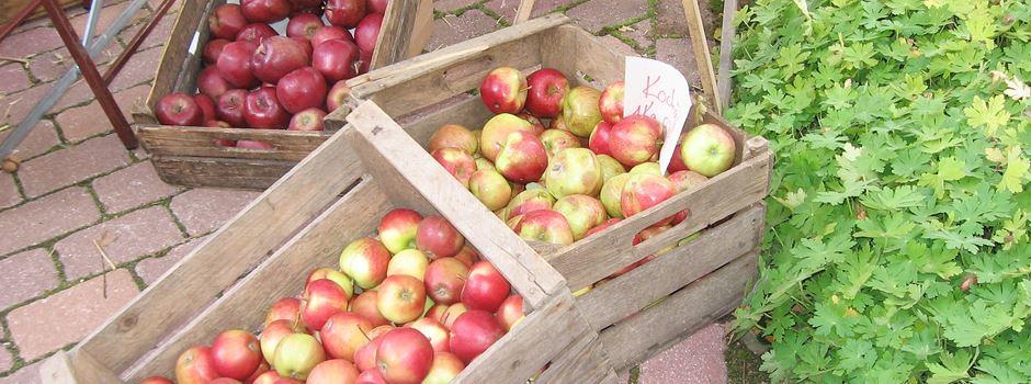 Heimatverein sagt Apfelmarkt ab