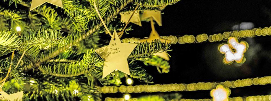 Wunschbaumaktion in Soltau: Ein Stern, der keinen Namen trägt