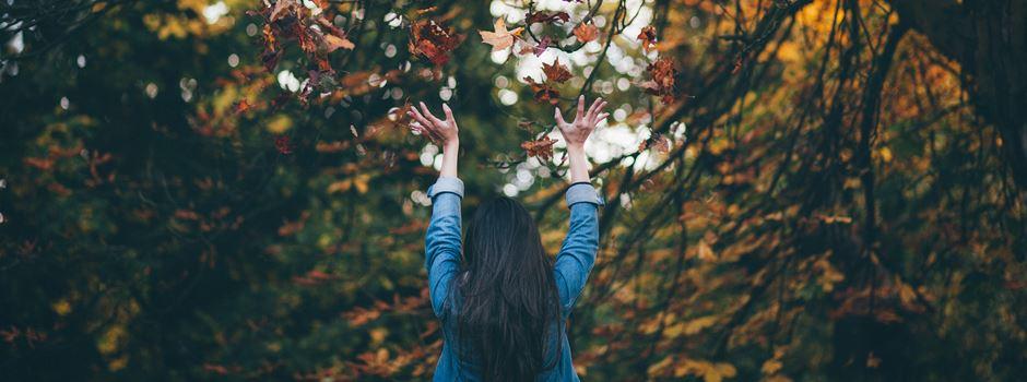 Hallo Herbst: Das könnt ihr in Augsburg unternehmen