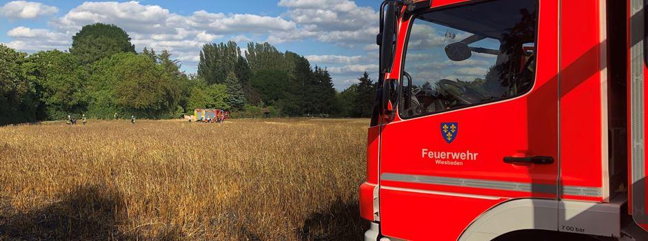 Großeinsatz der Feuerwehr an der A66