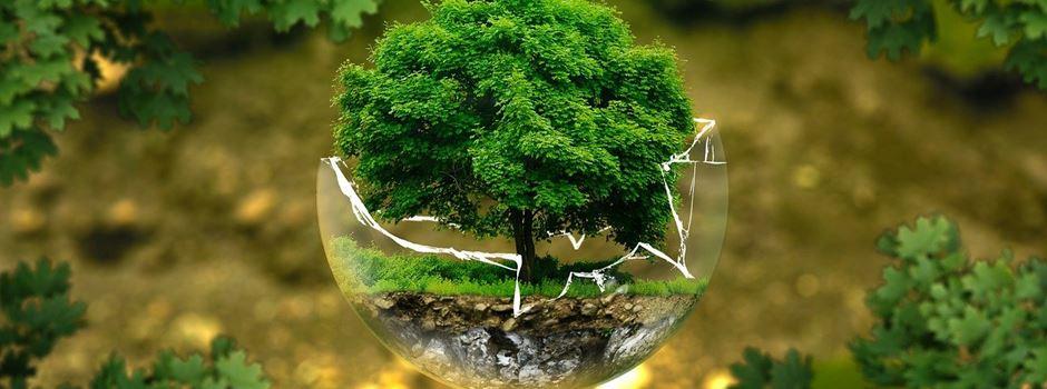 Erinnerung: Umwelt- und Klimaschutzpreis 2021 – Jetzt bewerben