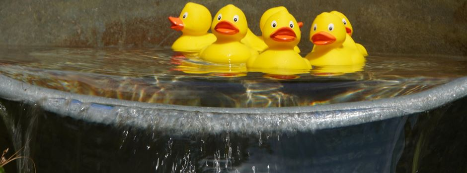 """Vorverkauf der """"Renn-Enten"""" beginnt"""