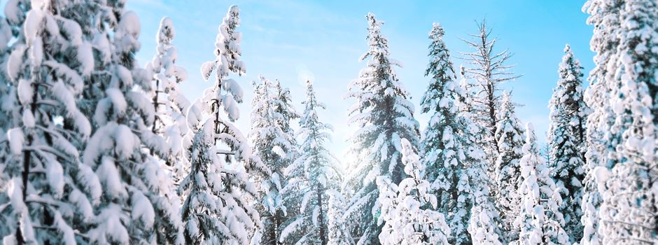 Die schönsten Winterwanderungen für die ganze Familie