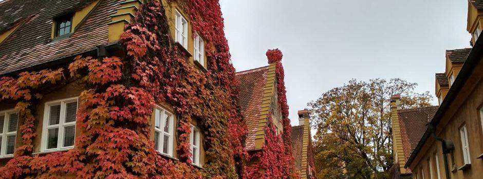 5 schöne Dinge, die ihr an einem Sonntag im Herbst machen könnt