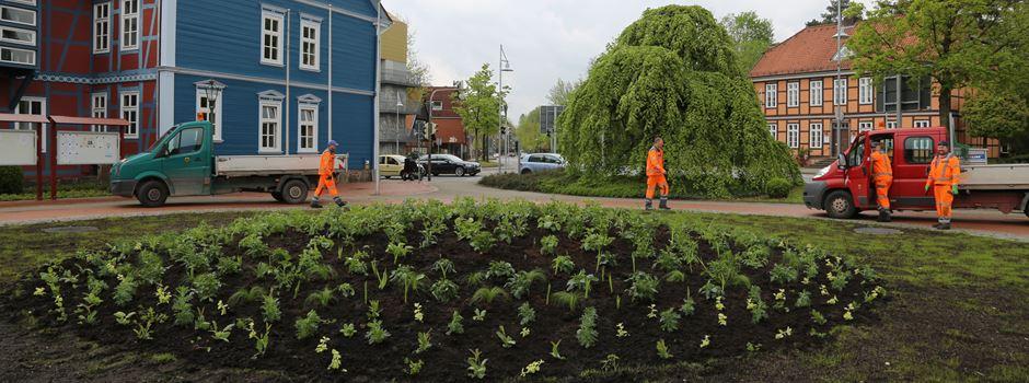 Rathausvorplatz bepflanzt
