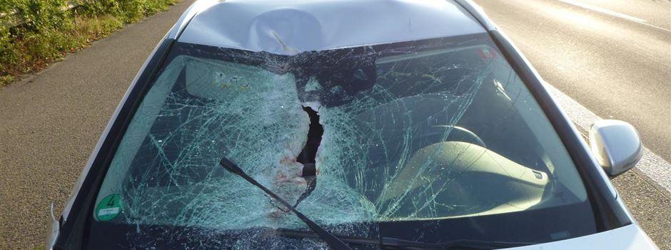 Pferd stirbt bei Verkehrsunfall auf der A60