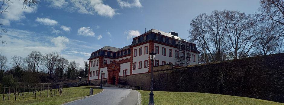 Mainzer Clubs veranstalten Open-Air-Event