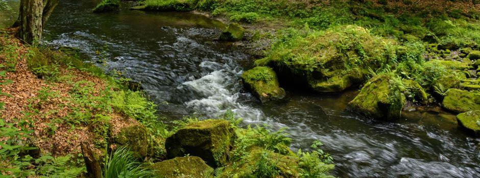 Land investiert 660.000 Euro in den Klingenbach in Breckenheim