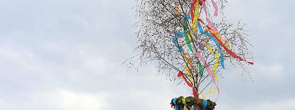 """Musik, Fahnenschwenken, Maibäume, """"DisTanz"""" - So feierte der JGV Niederkassel in den Mai (NEU mit Video)"""