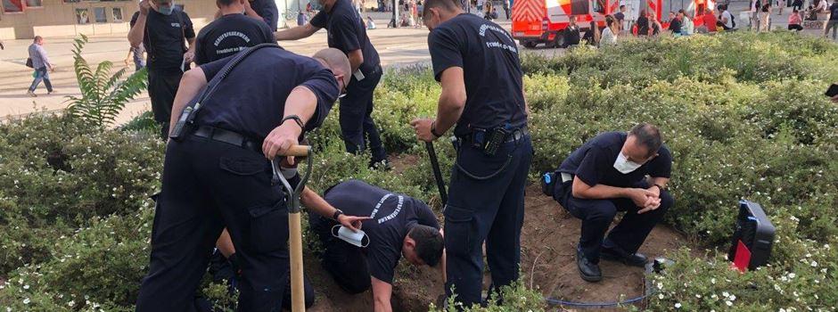 Happy End nach Großeinsatz: Feuerwehr rettet Hündin aus Kaninchenbau