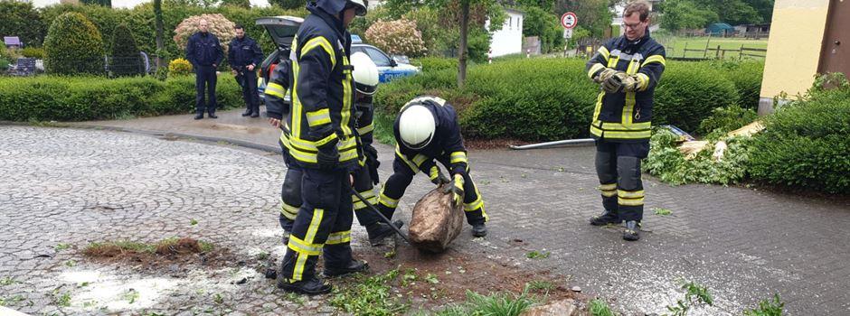 19 jähriger fällt Baum in Mondorf bei Verkehrsunfall