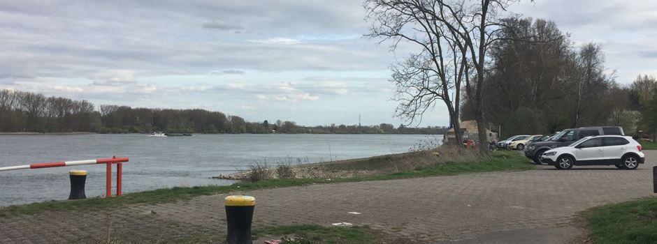 Massiver Umweltschaden am Rheinufer