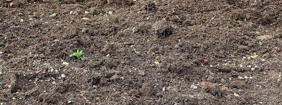 Proben für Bodenuntersuchungen können im Rathaus abgegeben werden