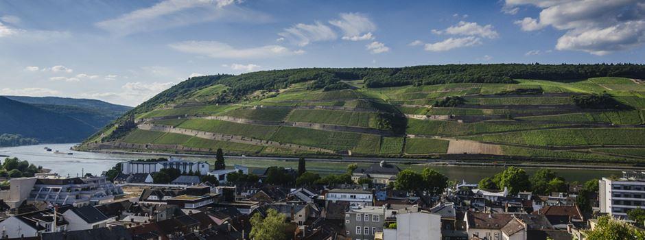 Rheinterrassenweg soll künftig bis nach Bingen führen