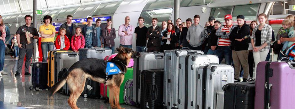 Spürhund erschnüffelt 2,5 Kilo Koks in Koffer