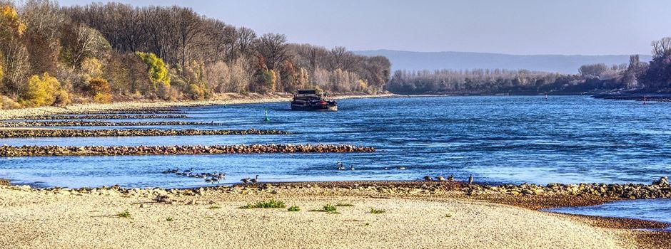 Niedrigwasser im Rhein könnte massive Auswirkungen haben