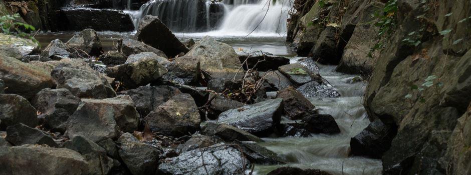 Wiesbadens Bäche trocknen aus - Wasserentnahme verboten