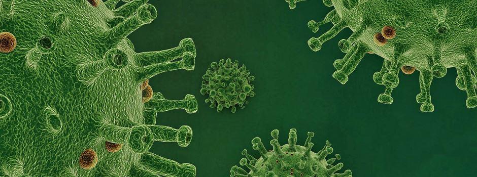 Coronavirus: Wie bereitet sich das Heidekreis-Klinikum auf die Pandemie vor?