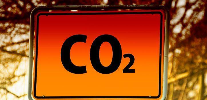 Klimaneutrale Verwaltung: Nachhaltige Drucker und Kopierer für die Kreisverwaltung Mainz-Bingen
