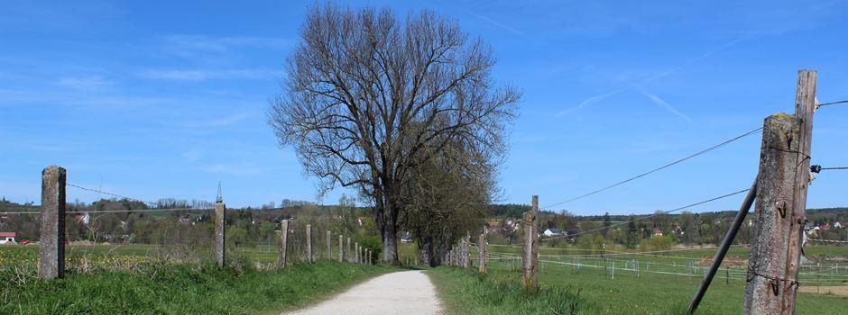 Ab ins Grüne: Ausflugsziele um Augsburg